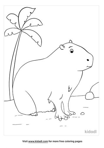 capybara coloring page-3-lg.png
