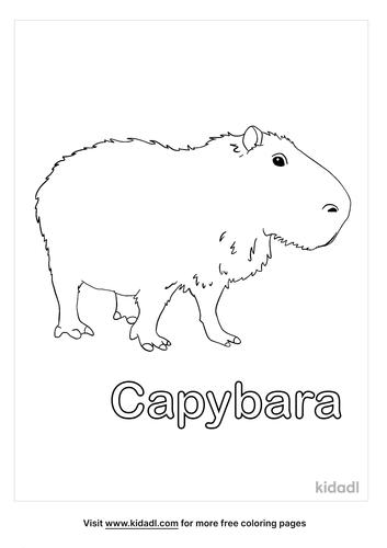 capybara coloring page-4-lg.png