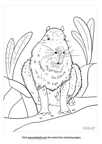 capybara coloring page-5-lg.png