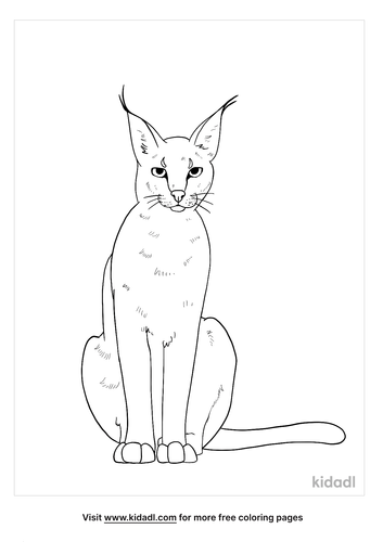 caracal coloring page-4-lg.png