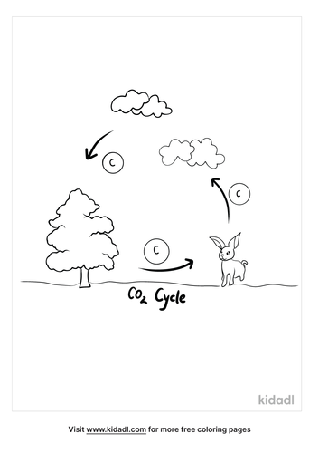 carbon-dioxide-cycle-coloring-page.png