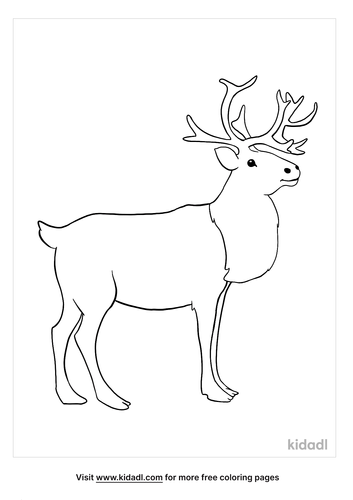 caribou coloring page-3-lg.png