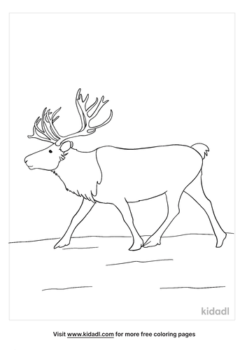 caribou coloring page-5-lg.png