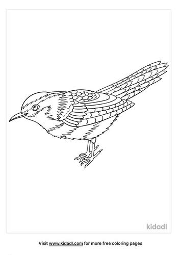 carolina wren coloring page-2-lg.png
