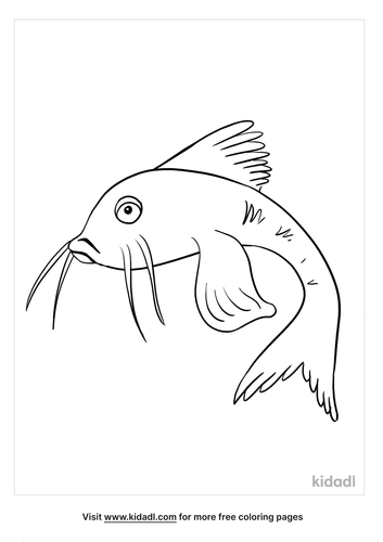 catfish coloring page_2_lg.png