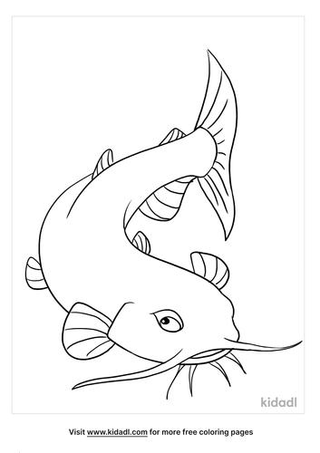 catfish coloring page_3_lg.png
