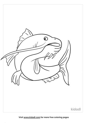 catfish coloring page_4_lg.png