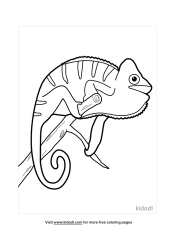 chameleon coloring pages-2-lg.png