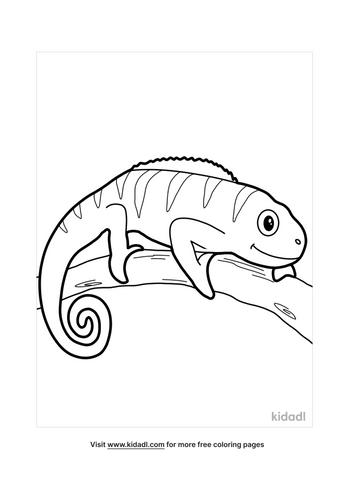 chameleon coloring pages-3-lg.png