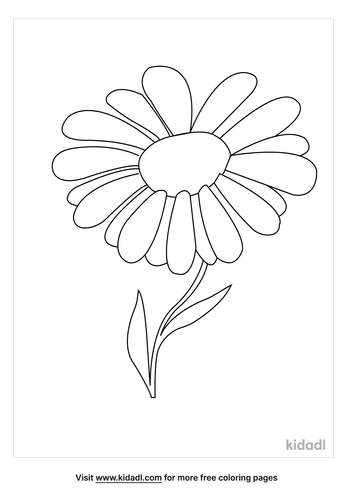 chamomile-coloring-page.png