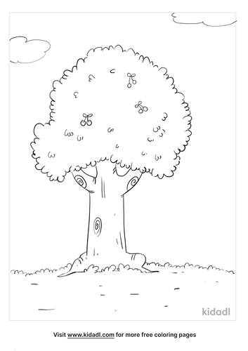 cherry tree coloring page_3_lg.png