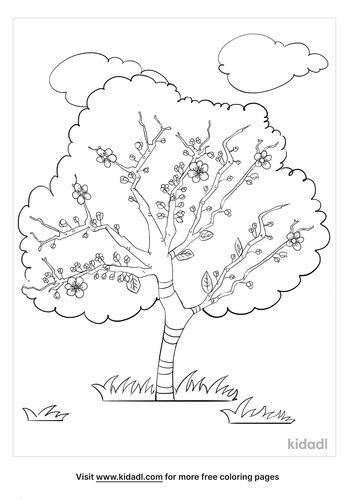 cherry tree coloring page_4_lg.png