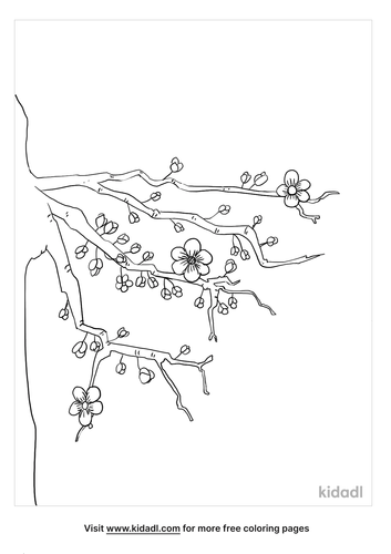 cherry tree coloring page_5_lg.png