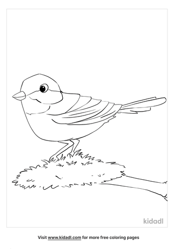 chickadee coloring page_3_lg.png