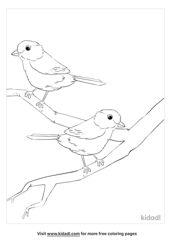 chickadee coloring page_4_lg.png