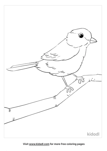 chickadee coloring page_5_lg.png
