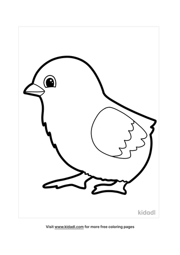 chicken coloring pages-3-lg.png