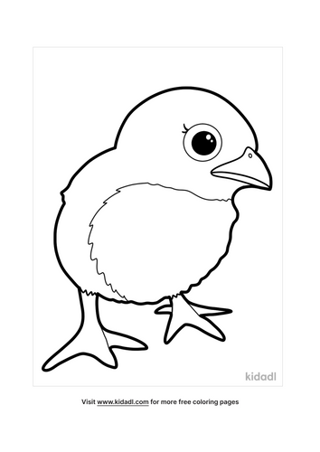 chicken coloring pages-5-lg.png