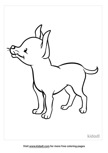 chihuahua coloring pages_5_lg.png