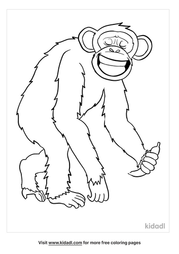 chimpanzee coloring page-4-lg.png