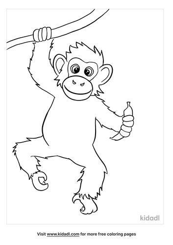 chimpanzee coloring page-5-lg.png