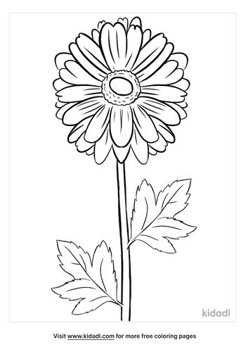 chrysanthemum coloring page-2-lg.png