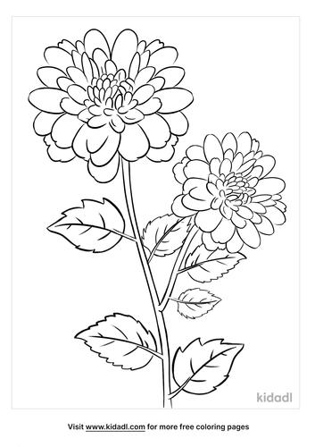 chrysanthemum coloring page-4-lg.png