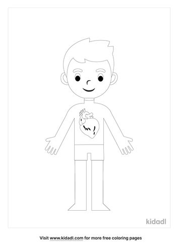circulatory-system-coloring-pages-3-lg.jpg