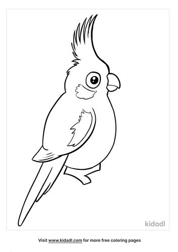 cockatiel coloring page_5_lg.png