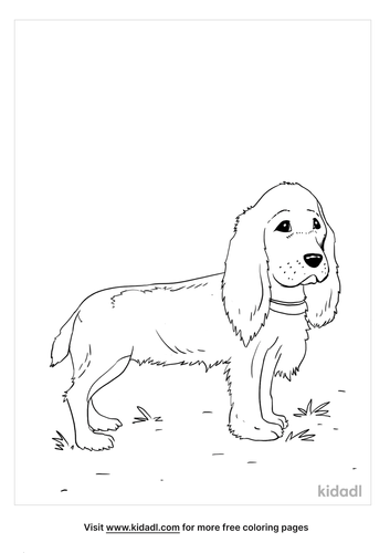 cocker spaniel coloring page_2_lg.png