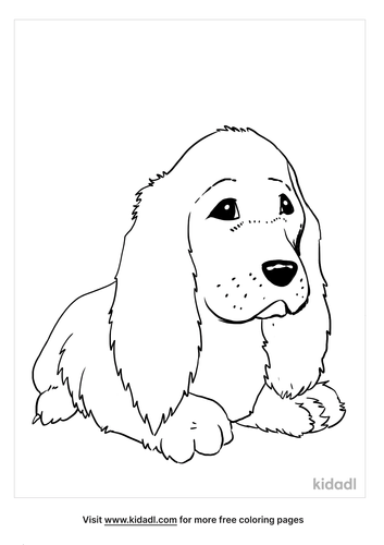 cocker spaniel coloring page_5_lg.png