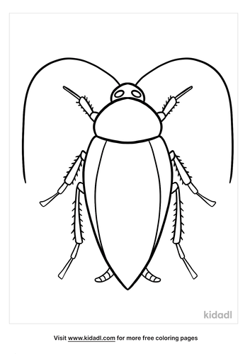 cockroach coloring page-lg.png