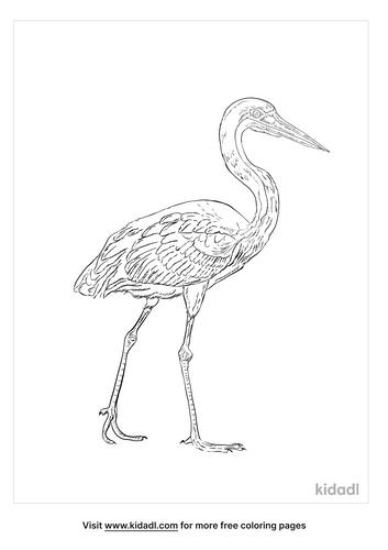 cocoi-heron-coloring-page