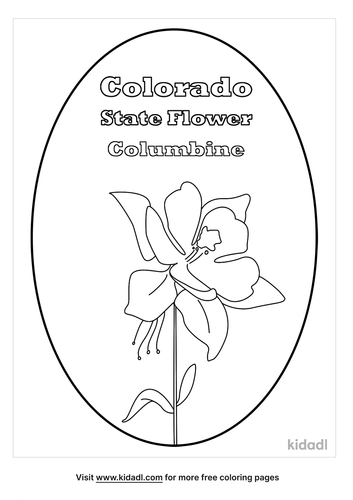 colorado state flower coloring page-lg.png