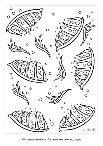 coloring page background-5-lg.png