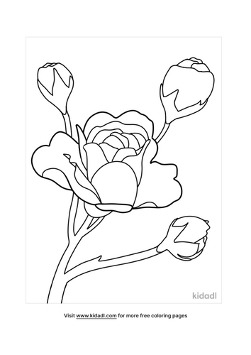coloring pages flowe-2-lg.png