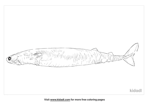 cookiecutter-shark-coloring-page