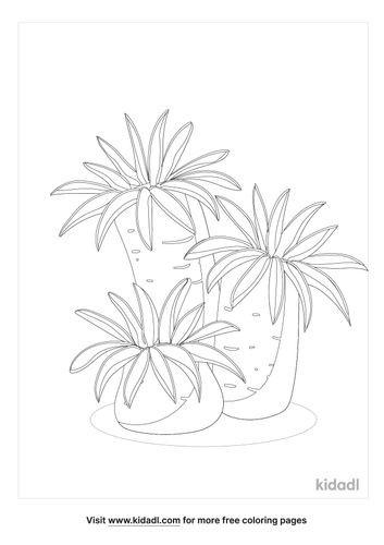 coral-coloring-pages-4-lg.jpg