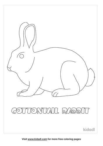 cottontail-rabbit-coloring-page.png