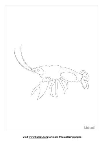 crawfish-coloring-pages-5-lg.jpg