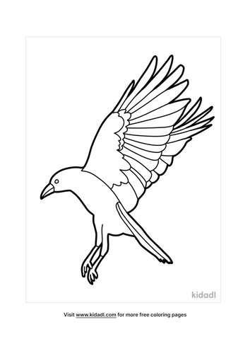 crow drawing-2-lg.png