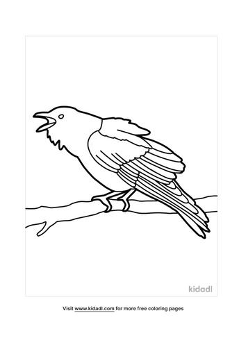 crow drawing-3-lg.png