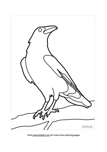 crow drawing-4-lg.png