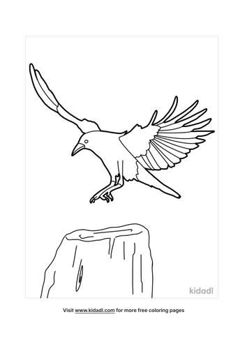 crow drawing-5-lg.png