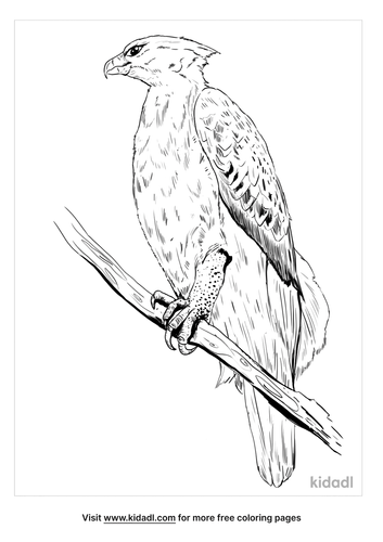 crowned-eagle-coloring-page