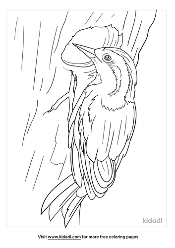 cuban-green-woodpecker-coloring-page.png