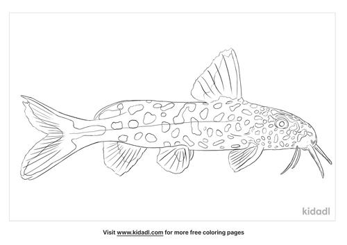 cuckoo-catfish-coloring-page