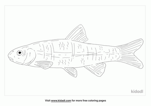 cutlips-minnow-coloring-page