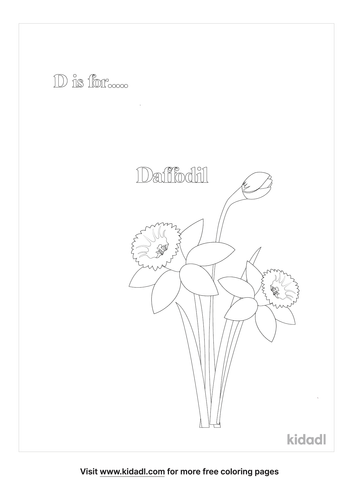 d-is-for-daffodil-coloring-page.png