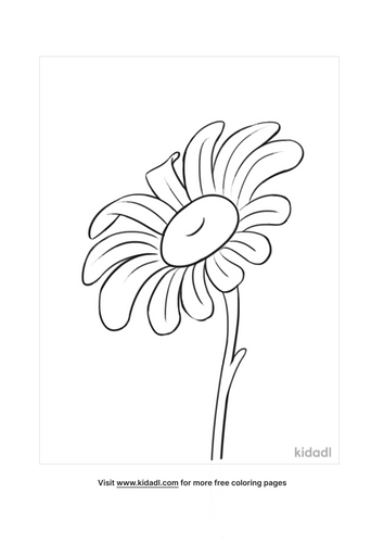 daisy coloring pages-3-lg.png